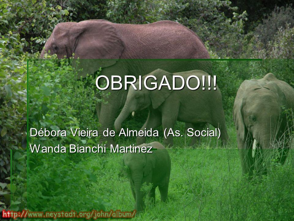 OBRIGADO!!! OBRIGADO!!! Débora Vieira de Almeida (As. Social) Wanda Bianchi Martinez
