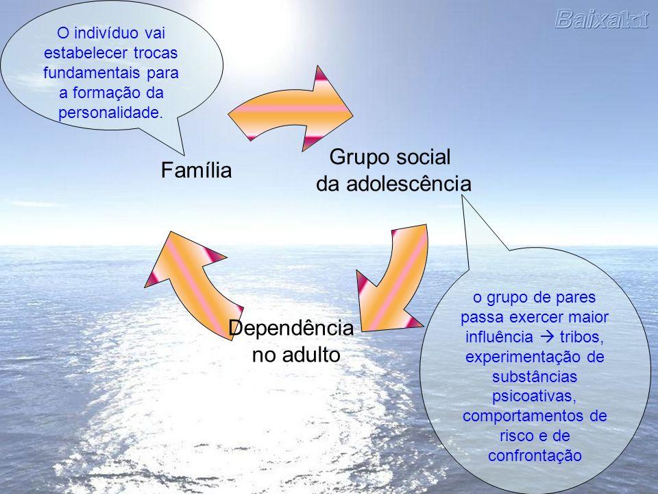 o grupo de pares passa exercer maior influência tribos, experimentação de substâncias psicoativas, comportamentos de risco e de confrontação Grupo soc