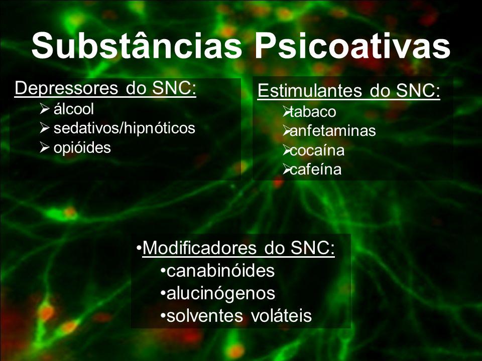 Depressores do SNC Álcool Ópio ( heroína, morfina, codeína) Calmantes Barbitúricos Inalantes