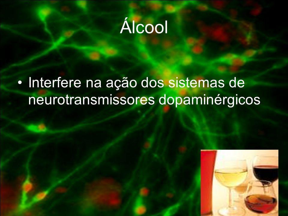Corte cerebral pós-mortem de um adito em cocaína.