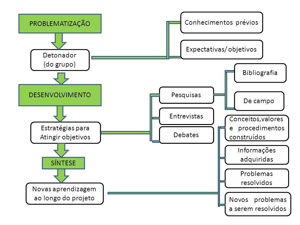 PROBLEMATIZAÇÃO DESENVOLVIMENTO Detonador (do grupo) Estratégias para Atingir objetivos SÍNTESE Novas aprendizagem ao longo do projeto Conhecimentos p