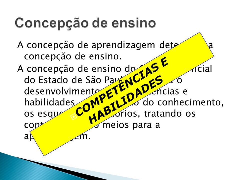 A concepção de aprendizagem determina a concepção de ensino. A concepção de ensino do Currículo Oficial do Estado de São Paulo privilegia o desenvolvi