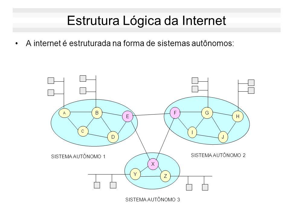 Estrutura Lógica da Internet A internet é estruturada na forma de sistemas autônomos: A B C D E FG I J H SISTEMA AUTÔNOMO 1 SISTEMA AUTÔNOMO 2 X Y Z SISTEMA AUTÔNOMO 3