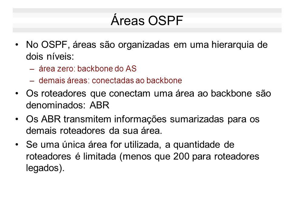 Conceitos do OSPF Um roteador OSPF deve ter um identificador único em todo o sistema Autônomo –identificador de roteador: endereço IP de uma das inter