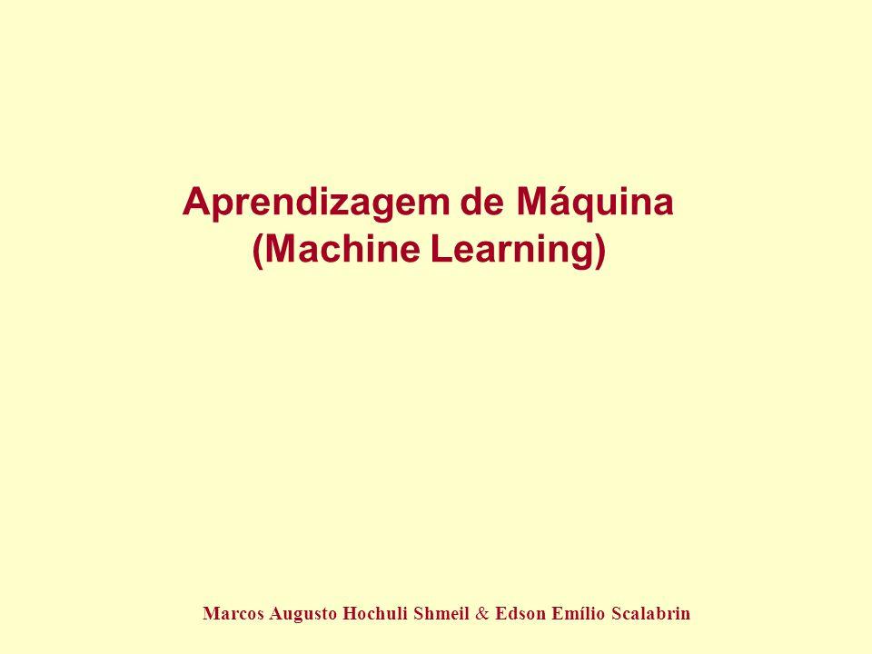 Aprendizagem de Máquina (Machine Learning) Marcos Augusto Hochuli Shmeil & Edson Emílio Scalabrin