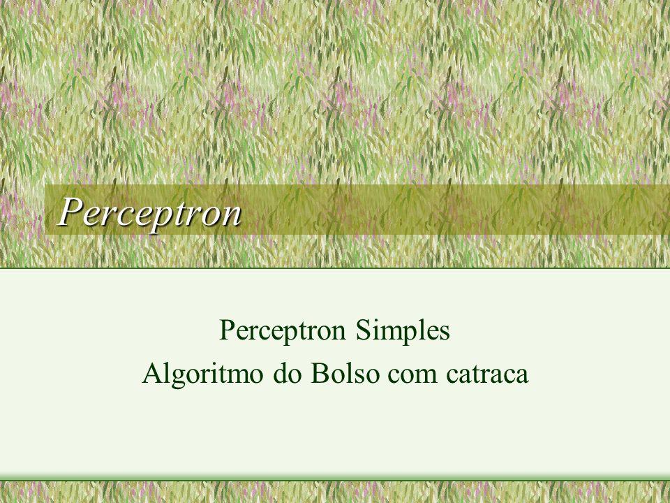 Perceptron - Características O perceptron é usado para conjuntos de treinamento linearmente separáveis: Inclusão de tendência (bias): No algoritmo de aprendizagem do Perceptron busca-se um vetor W que tenha projeção positiva (produto interno) com todos os exemplos positivos e projeção negativa com todos os exemplos negativos.
