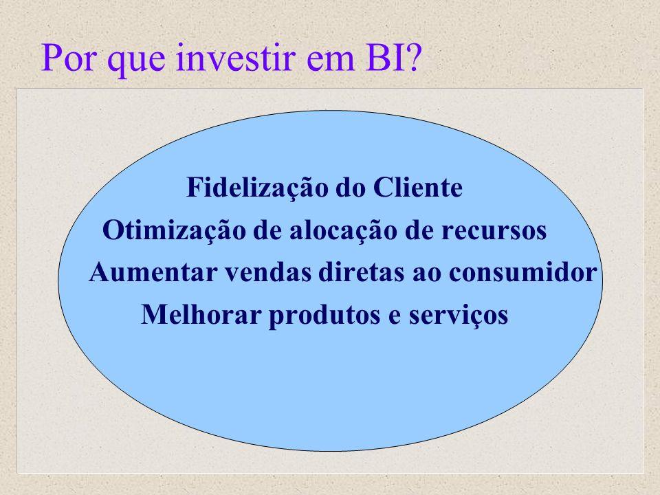Por que investir em BI? Fidelização do Cliente Otimização de alocação de recursos Aumentar vendas diretas ao consumidor Melhorar produtos e serviços