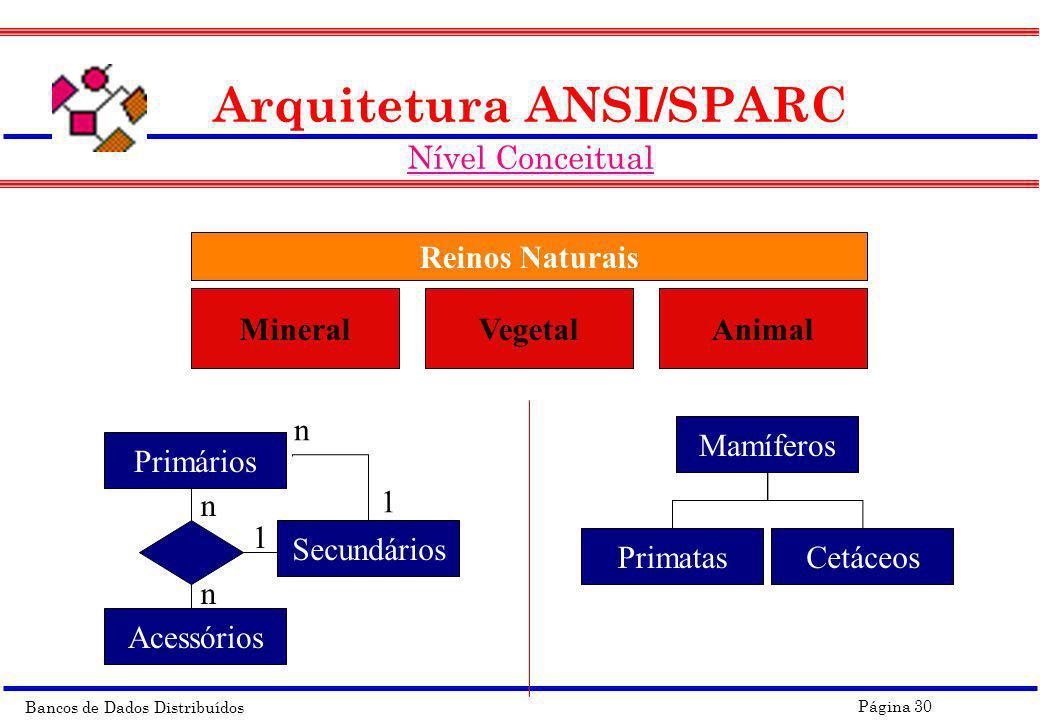 Bancos de Dados Distribuídos Página 30 Arquitetura ANSI/SPARC Nível Conceitual MineralVegetalAnimal Reinos Naturais Primários Acessórios Secundários 1