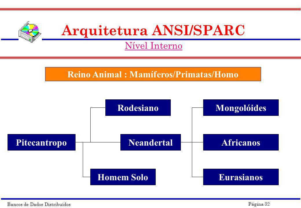 Bancos de Dados Distribuídos Página 32 Arquitetura ANSI/SPARC Nível Interno Reino Animal : Mamíferos/Primatas/Homo Pitecantropo Rodesiano Homem Solo N