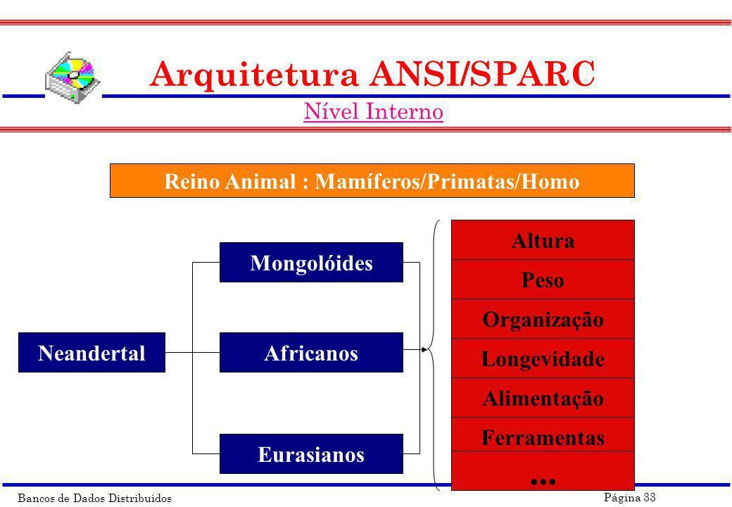 Bancos de Dados Distribuídos Página 33 Arquitetura ANSI/SPARC Nível Interno Reino Animal : Mamíferos/Primatas/Homo Neandertal Mongolóides Africanos Eu
