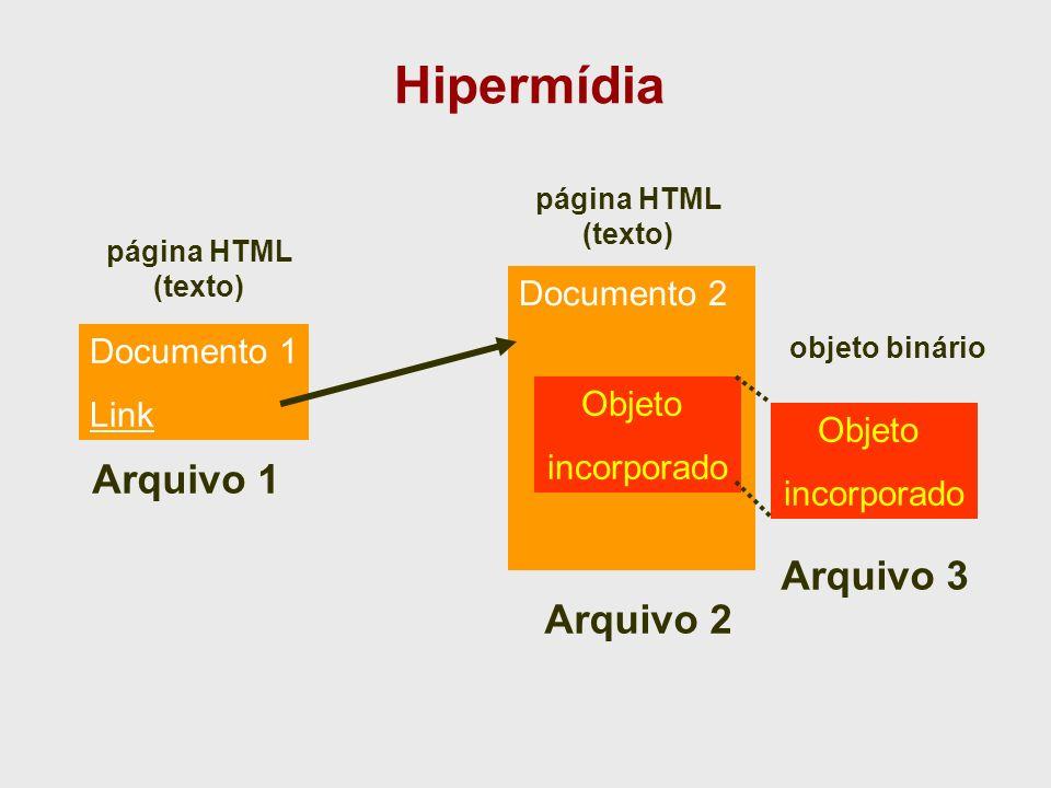 Tecnologias WWW WWW é o resultado da combinação de várias tecnologias: TCP/IP: infra-estrutura de rede Arquitetura cliente/servidor: estratégia para implementação dos serviços HTTP: Protocolo de aplicação MIME: padrão de codificação dos dados –Multipurpose Internet Mail Extensions HTML: padrão de apresentação dos dados –Hypertext Markup Language