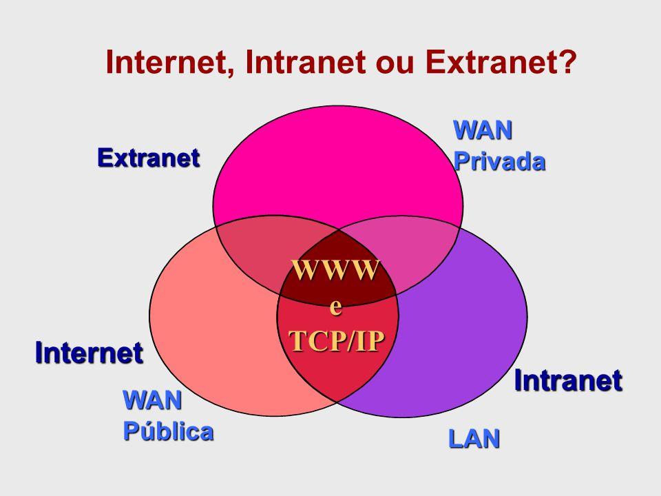 Extranets REDE A REDE B EMPRESAFILIAL Canal de comunicação criptografado Tecnologia baseada em chaves
