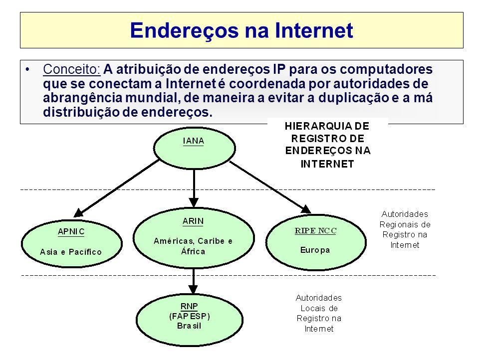 Endereços na Internet Conceito: A atribuição de endereços IP para os computadores que se conectam a Internet é coordenada por autoridades de abrangência mundial, de maneira a evitar a duplicação e a má distribuição de endereços.