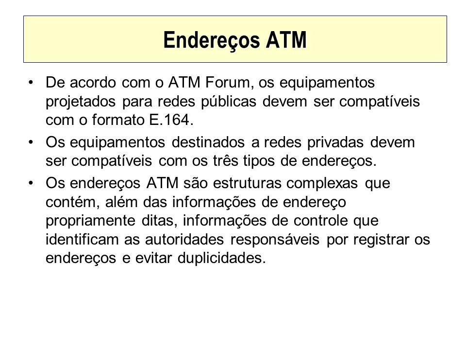 De acordo com o ATM Forum, os equipamentos projetados para redes públicas devem ser compatíveis com o formato E.164. Os equipamentos destinados a rede