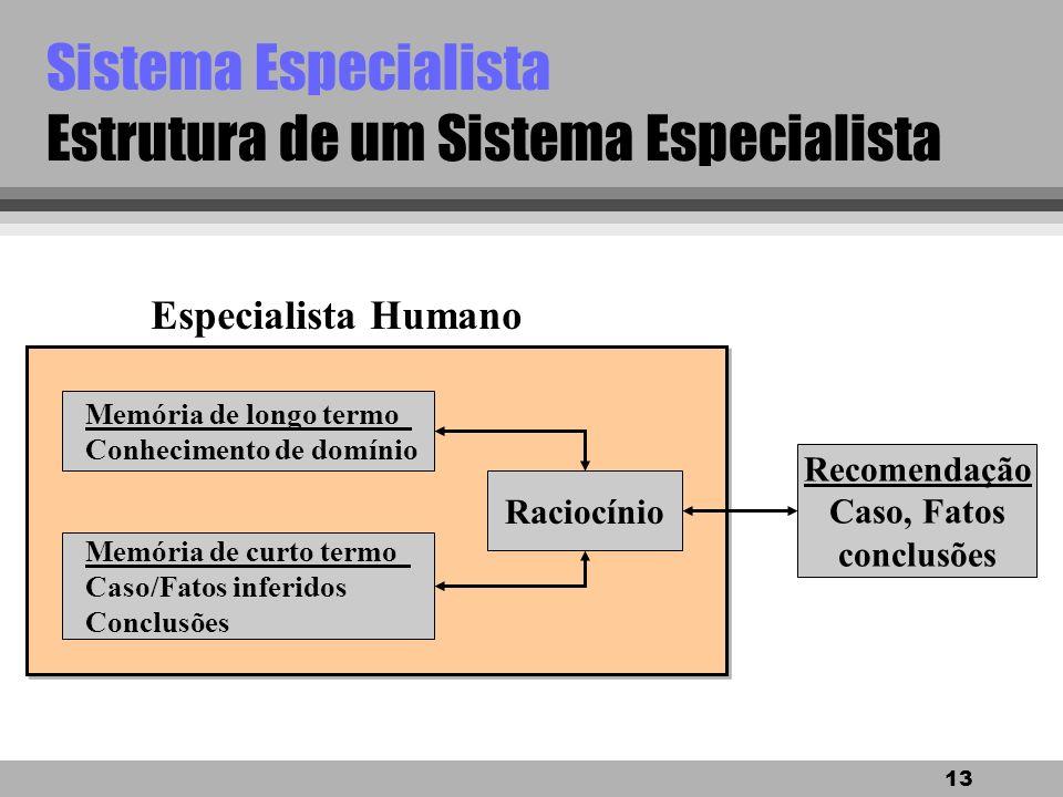 12 Sistema Especialista Por que construir... Assistir um especialista, algumas razões: l auxiliar o especialista em alguma tarefa rotineira para melho