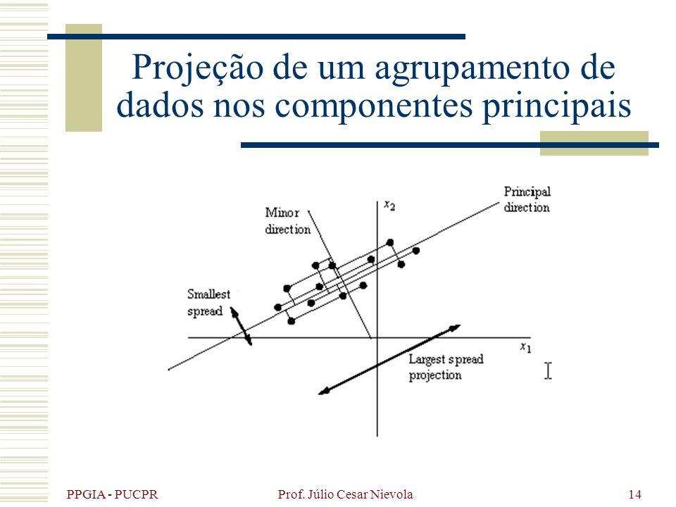 PPGIA - PUCPR Prof. Júlio Cesar Nievola14 Projeção de um agrupamento de dados nos componentes principais