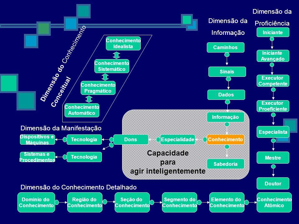 Capacidade para agir inteligentemente Domínio do Conhecimento Região do Conhecimento Seção do Conhecimento Segmento do Conhecimento Elemento do Conhec