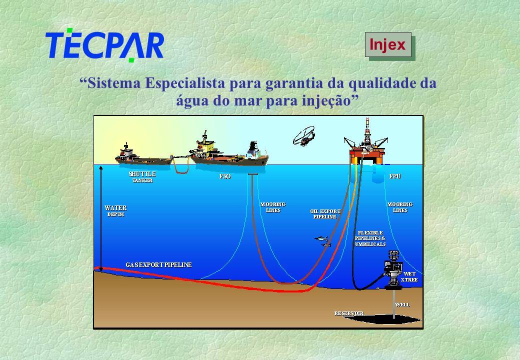 Sistema Especialista para garantia da qualidade da água do mar para injeção Injex