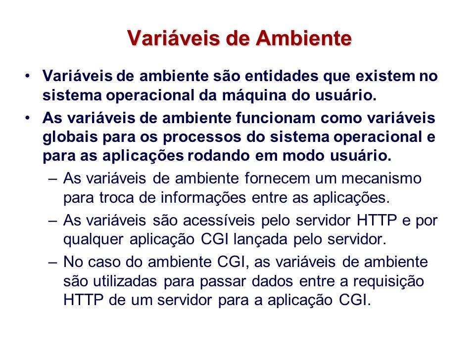 Variáveis de Ambiente Variáveis de ambiente são entidades que existem no sistema operacional da máquina do usuário. As variáveis de ambiente funcionam