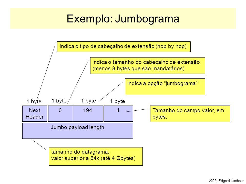 2002, Edgard Jamhour Hop-by-hop Header Define opções sobre o datagrama transportado, que todos os roteadores devem analisar (todos os nós IPv6, incluindo o destino).