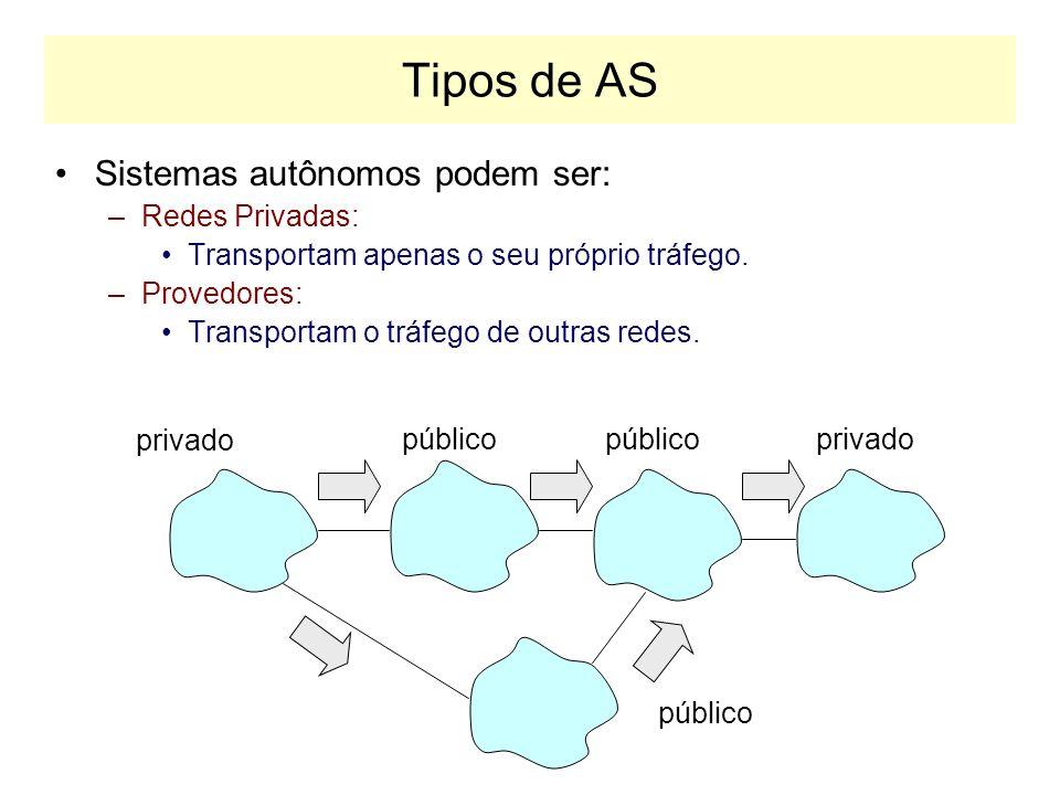 Tipos de AS Sistemas autônomos podem ser: –Redes Privadas: Transportam apenas o seu próprio tráfego.