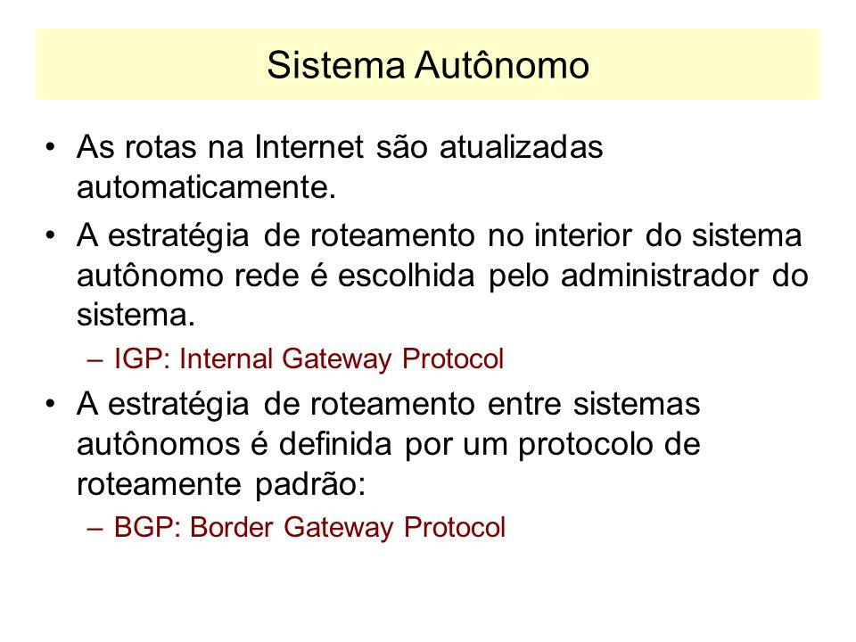 Roteadores na Internet Os roteadores da Internet são de dois tipos: Exterior Gateways –Troca informações com roteadores pertencentes a outros AS.