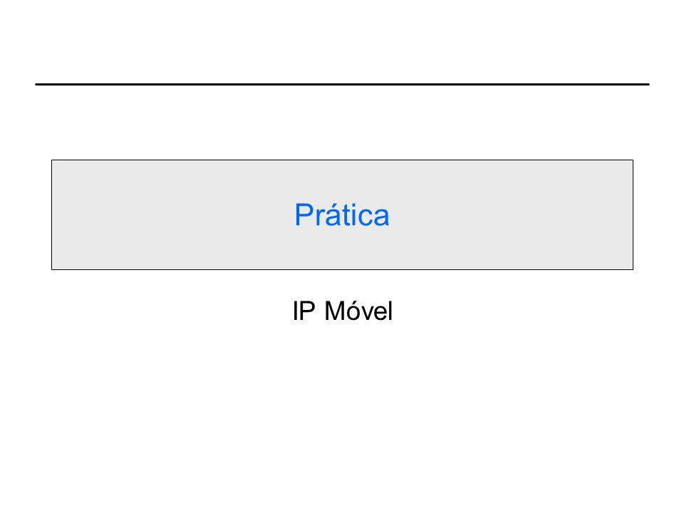 Prática IP Móvel