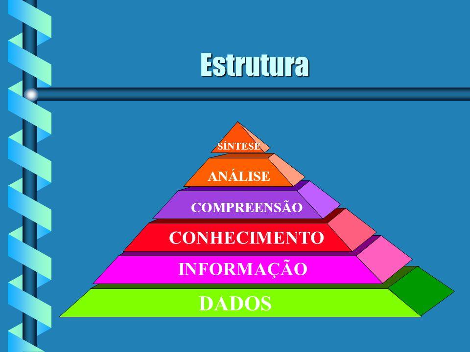 O que é CONHECIMENTO ? Uma combinação de instintos, idéias, regras e procedimentos que guiam as ações e decisões. Uma combinação de instintos, idéias,