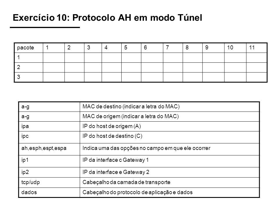 Exercício 10: Protocolo AH em modo Túnel pacote1234567891011 1 2 3 a-gMAC de destino (indicar a letra do MAC) a-gMAC de origem (indicar a letra do MAC) ipaIP do host de origem (A) ipcIP do host de destino (C) ah,esph,espt,espaIndica uma das opções no campo em que ele ocorrer ip1IP da interface c Gateway 1 ip2IP da interface e Gateway 2 tcp/udpCabeçalho da camada de transporte dadosCabeçalho do protocolo de aplicação e dados