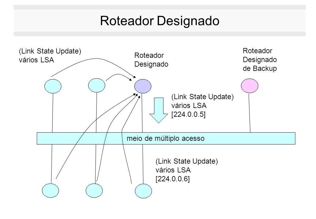 Roteador Designado meio de múltiplo acesso Roteador Designado Roteador Designado de Backup (Link State Update) vários LSA [224.0.0.5] (Link State Upda