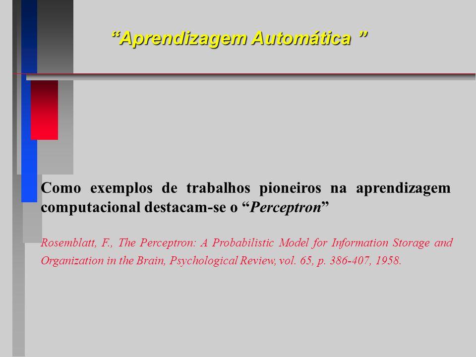 Como exemplos de trabalhos pioneiros na aprendizagem computacional destacam-se o Perceptron Rosemblatt, F., The Perceptron: A Probabilistic Model for