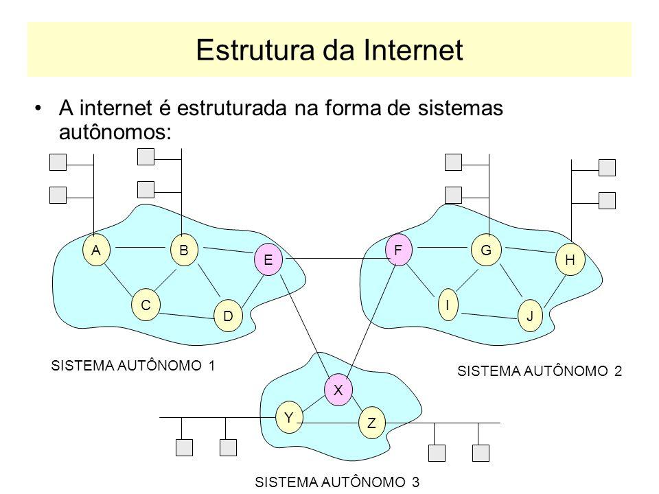 Estrutura da Internet A internet é estruturada na forma de sistemas autônomos: AB C D E FG I J H SISTEMA AUTÔNOMO 1 SISTEMA AUTÔNOMO 2 X Y Z SISTEMA AUTÔNOMO 3