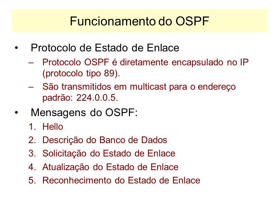 Terminologia OSPF Roteadores Intra-Area: –Conhecem apenas a topologia de rede do interior de sua própria área. Roteadores de Fronteira de Área –Conhec