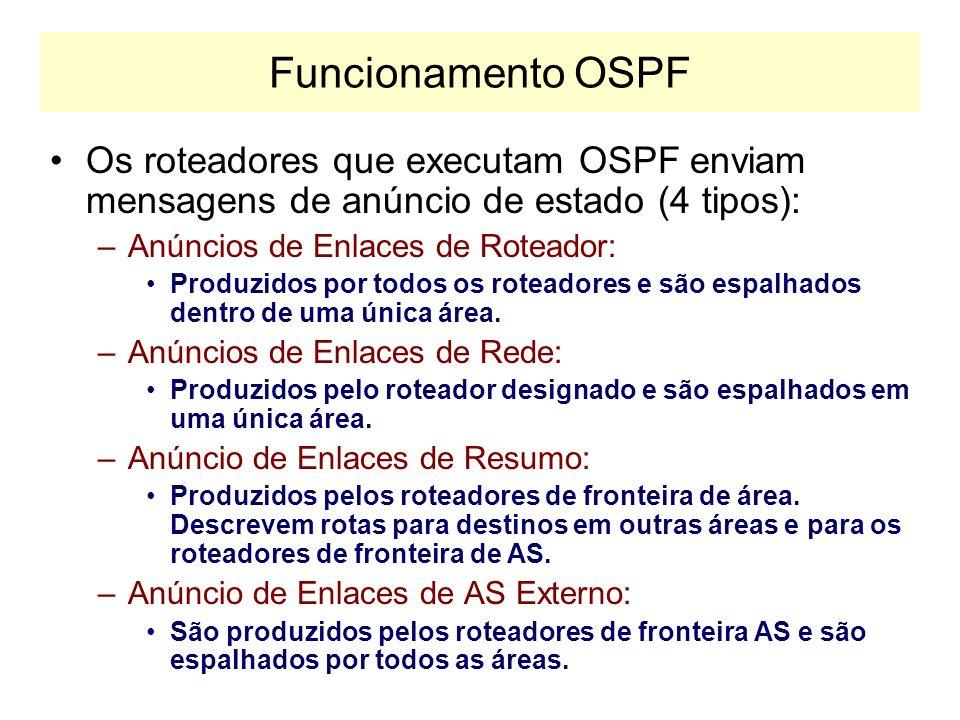 Funcionamento do OSPF Protocolo de Estado de Enlace –Protocolo OSPF é diretamente encapsulado no IP (protocolo tipo 89). –São transmitidos em multicas