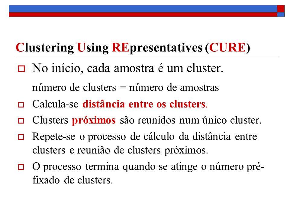 Clustering Using REpresentatives (CURE) No início, cada amostra é um cluster. número de clusters = número de amostras Calcula-se distância entre os cl