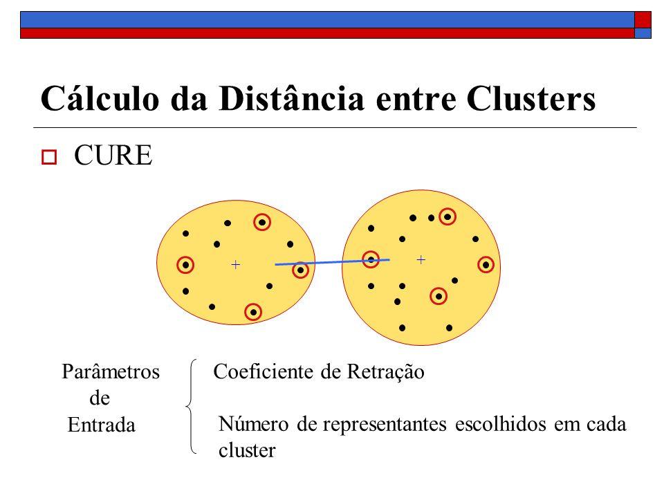 Cálculo da Distância entre Clusters CURE + + Coeficiente de Retração Número de representantes escolhidos em cada cluster Parâmetros de Entrada