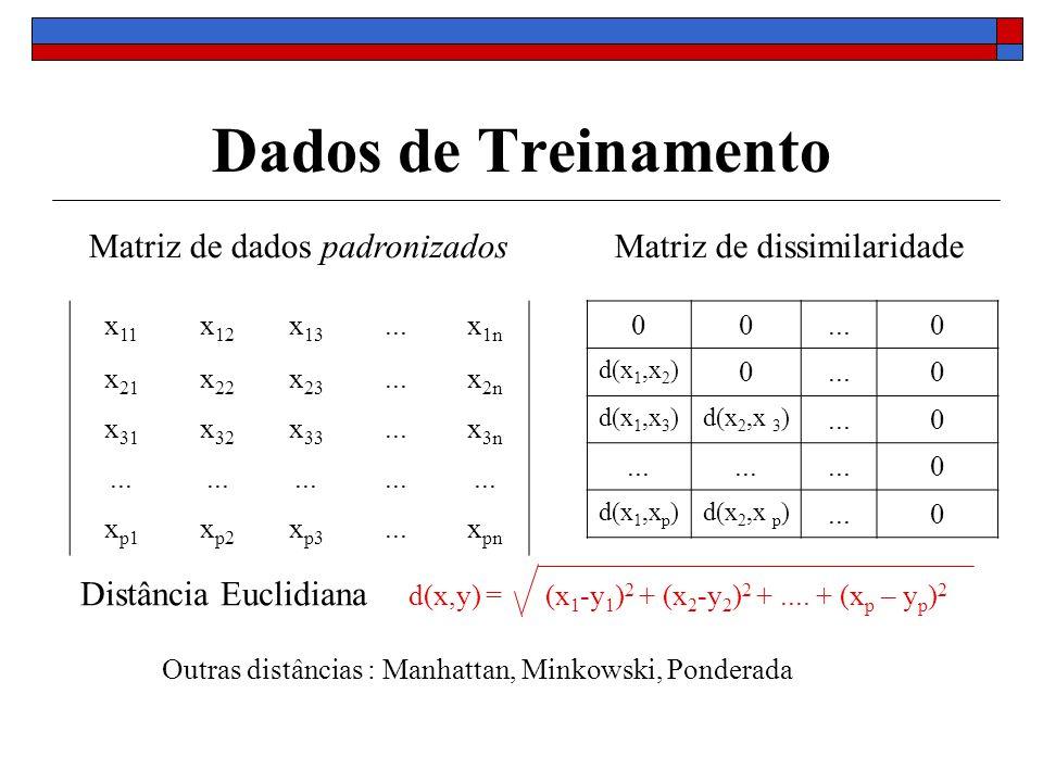 Dados de Treinamento x 11 x 12 x 13...x 1n x 21 x 22 x 23...x 2n x 31 x 32 x 33...x 3n... x p1 x p2 x p3...x pn 00...0 d(x 1,x 2 ) 0...0 d(x 1,x 3 )d(
