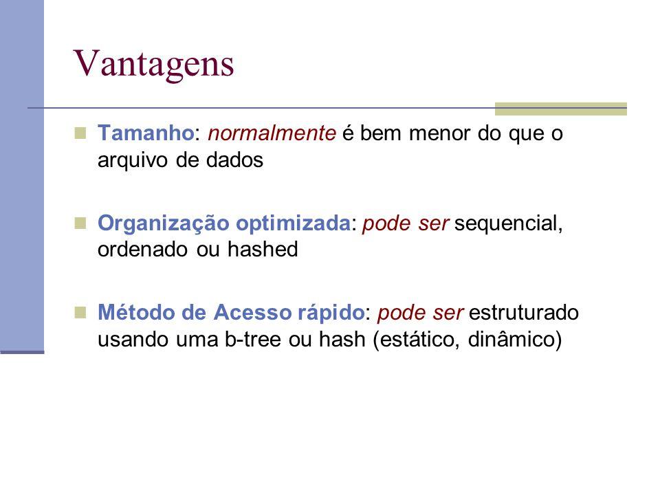 Vantagens Tamanho: normalmente é bem menor do que o arquivo de dados Organização optimizada: pode ser sequencial, ordenado ou hashed Método de Acesso