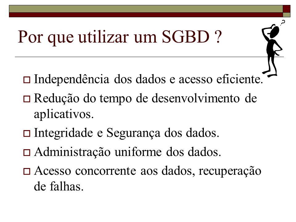 Por que estudar Banco de Dados ?.