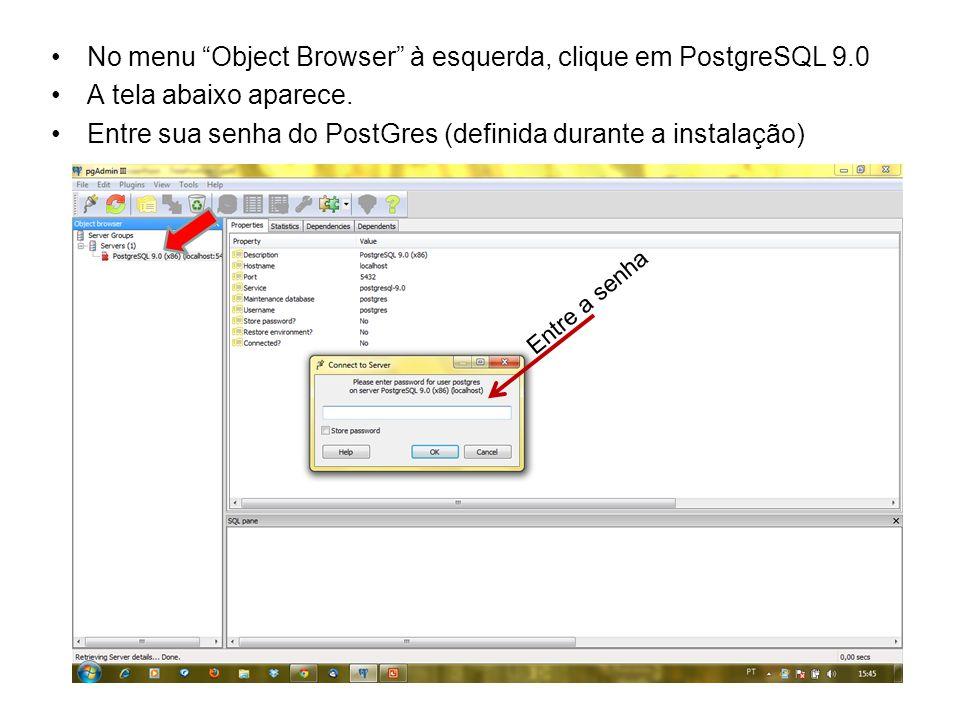 No menu Object Browser à esquerda, clique em PostgreSQL 9.0 A tela abaixo aparece. Entre sua senha do PostGres (definida durante a instalação) Entre a