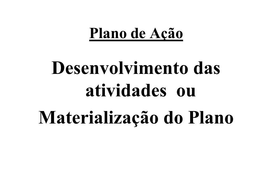 Plano de Ação Desenvolvimento das atividades ou Materialização do Plano