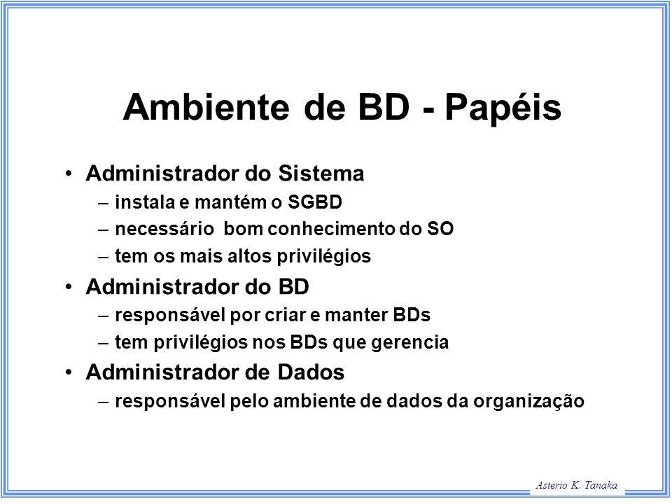 Asterio K. Tanaka Ambiente de BD - Papéis Administrador do Sistema –instala e mantém o SGBD –necessário bom conhecimento do SO –tem os mais altos priv