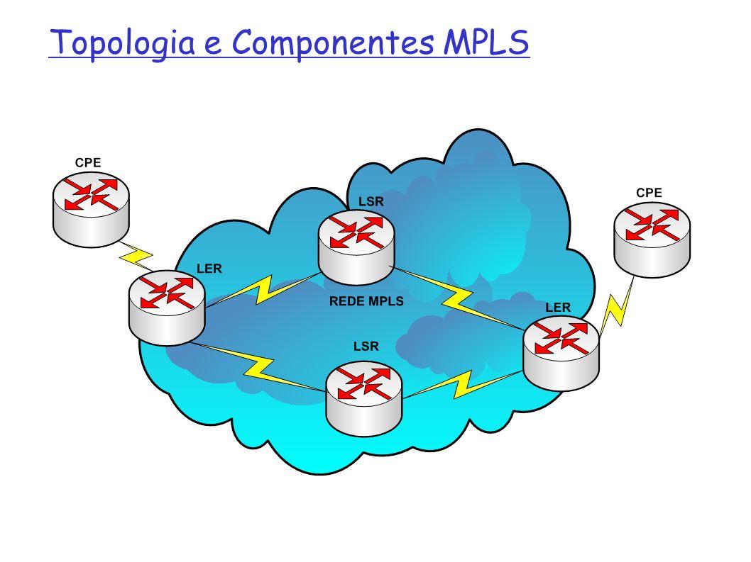 LER: Label Edge Router É um nó da rede MPLS que está na borda, fazendo conexão com outras redes MPLS ou com redes não MPLS Fazem a associação dos pacotes com os Labels, definindo o seu caminho na rede MPLS Solicitam a criação dos Labels Labels são inseridos no ingress LER e removidos no egress LER