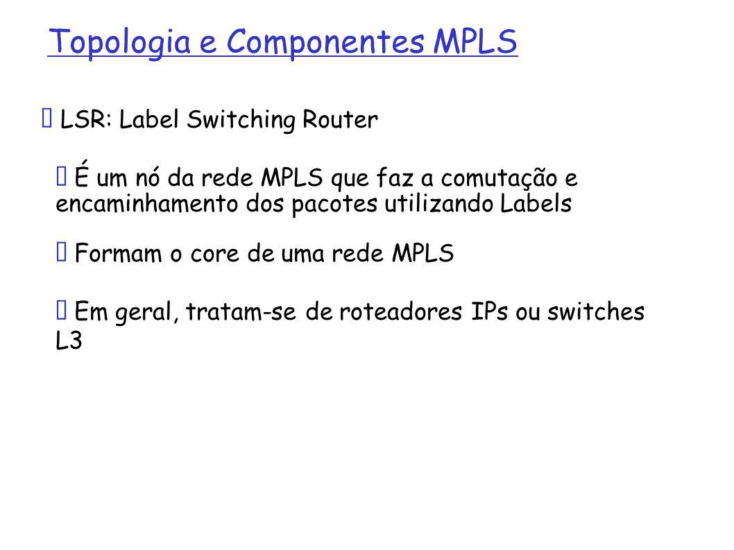 Topologia e Componentes MPLS LSR: Label Switching Router É um nó da rede MPLS que faz a comutação e encaminhamento dos pacotes utilizando Labels Forma