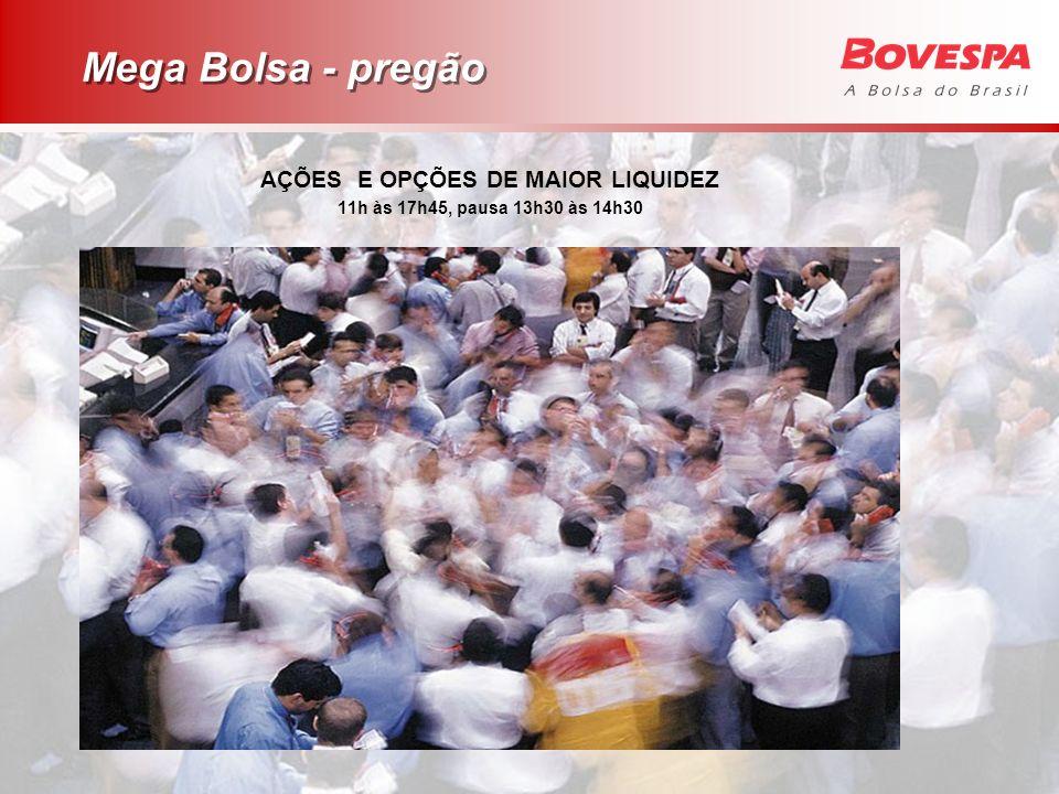 AÇÕES E OPÇÕES DE MAIOR LIQUIDEZ 11h às 17h45, pausa 13h30 às 14h30 Mega Bolsa - pregão