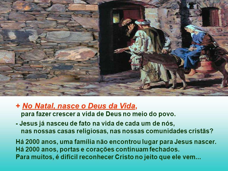 + No Natal, nasce o Deus da Vida, para fazer crescer a vida de Deus no meio do povo.