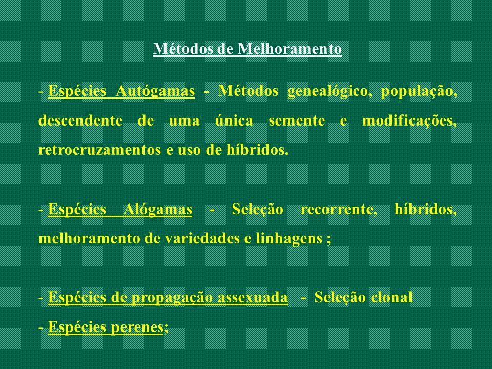 - Espécies Autógamas - Métodos genealógico, população, descendente de uma única semente e modificações, retrocruzamentos e uso de híbridos. - Espécies