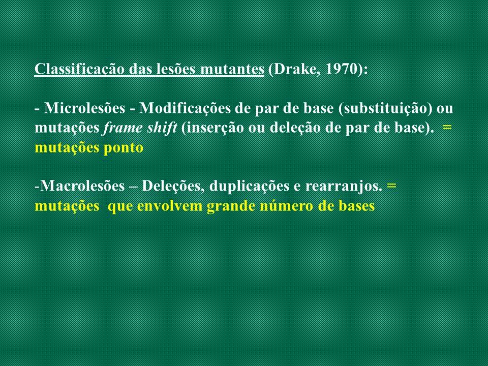 Classificação das lesões mutantes (Drake, 1970): - Microlesões - Modificações de par de base (substituição) ou mutações frame shift (inserção ou deleç