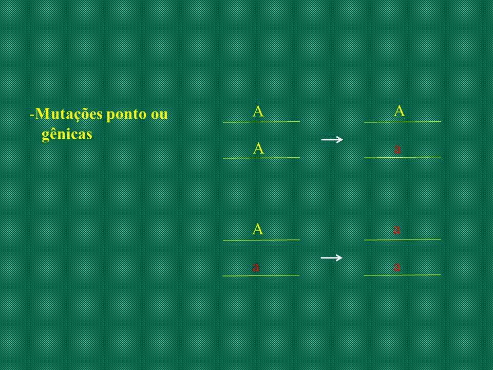 -Mutações ponto ou gênicas A A A a A a a a
