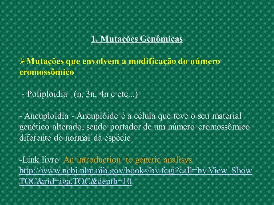 1. Mutações Genômicas Mutações que envolvem a modificação do número cromossômico - Poliploidia (n, 3n, 4n e etc...) - Aneuploidia - Aneuplóide é a cél